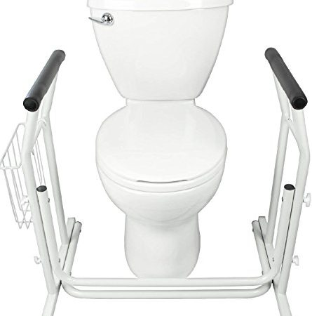 Stand Alone Toilet Rail by Vive