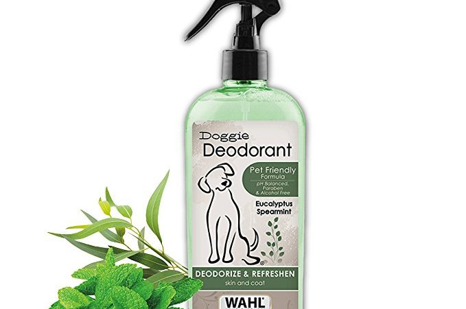 Wahl presents Eucalyptus and Spearmint Deodorant Spray for Pet
