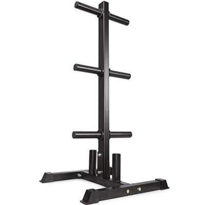 #10. Titan Fitness Olympic Weight Plate Rack Tree
