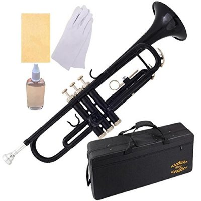 Glory Brass Bb Trumpet with Case and Kit: