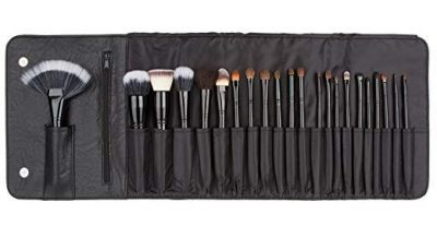 Coastal Scents 22 Piece Brush Set: