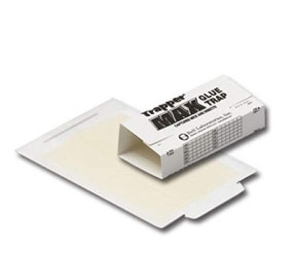 Trapper Max Glue Traps 6 Glue Boards by Trapper Max: