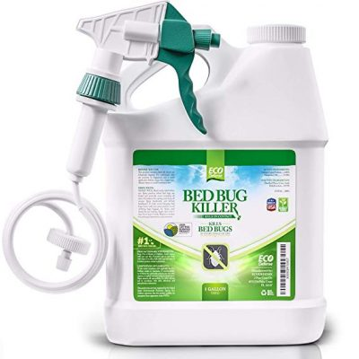 3. Eco Defense Bed Bug Killer, Natural Organic Formula Fastest (1 Gallon):