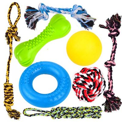 Youngever 8 Durable Dog Chew Toys - Puppy Toys - Value Pack - for Small & Medium Dogs: