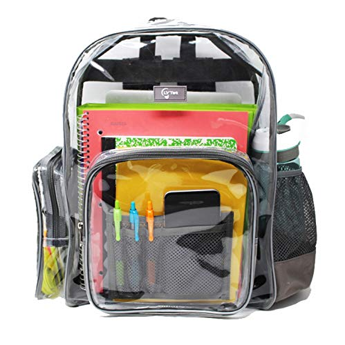 Large Heavy Duty Clear Backpack