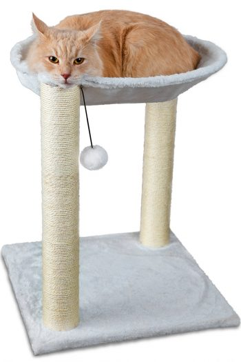 Paws & Pals Cat Tree House, 16 x 16 x 20-Inches