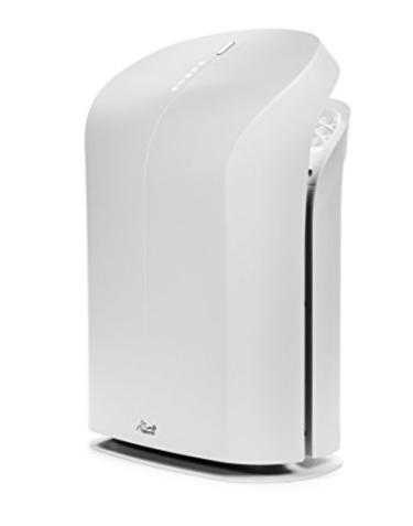 Rabbit Air BioGS 2.0 Ultra Quiet HEPA Air Purifier (SPA-625A)